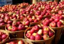 Госконтроль проверил стабилизационные фонды продовольственных товаров в Оршанском районе