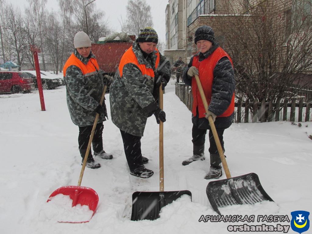 снег плюс 010