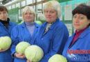 Новые теплицы позволят филиалу «Тепличный» выращивать вдвое больше овощей круглый год