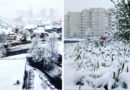 Такого мы не ждали: 11 мая в Орше выпал снег (+фото)