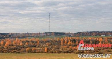 Осенняя безмятежность в окрестностях Орши (фото)