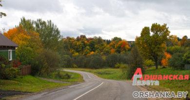 Фоторепортаж: золотая осень в Пищалово