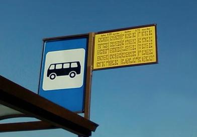 Могут ли школьники бесплатно ездить на автобусе во время летних каникул