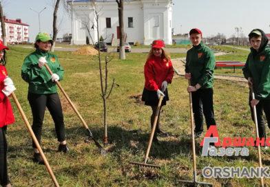 Районный субботник объявлен 23 марта