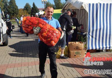 Осенние ярмарки в Орше: где и когда