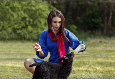 Новый сезон «СТВ»: реалити-шоу о деревне, тайны Беларуси и лучшие сериалы