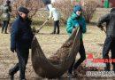 В Оршанском регионе прошел первый субботник (+фото)