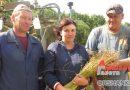 От теребления до прессовки: идет уборочная на Ореховском льнозаводе
