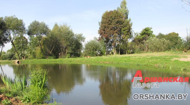 Жители Лариновки превратили болото в красивое место отдыха