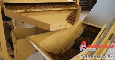Как устроено производство пеллет из костры льна в Орше | видео