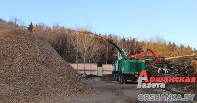 В Орше отходы древесины перерабатывают в топливо для котельных