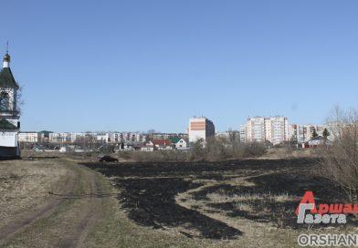 Палы травы вредят экологии, приводят к пожарам. Оршанские спасатели ищут нарушителей | видео