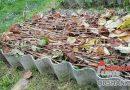 Как сделать компост из опавших листьев