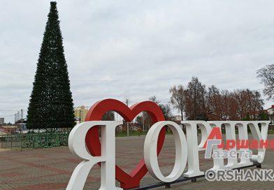 В каких районах Орши поставят новогодние ёлки?