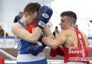 Кто победители? В Орше завершилось первенство Беларуси по боксу  | фото