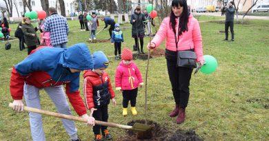 В Ореховске молодежь заложила аллею семейных деревьев