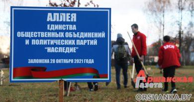 В Парке Героев оршанцы заложили аллею единства