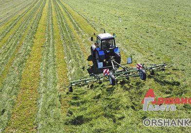 В Оршанском районе приступили к заготовке зеленых кормов